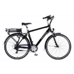 Vélo Electrique Homme Alegria